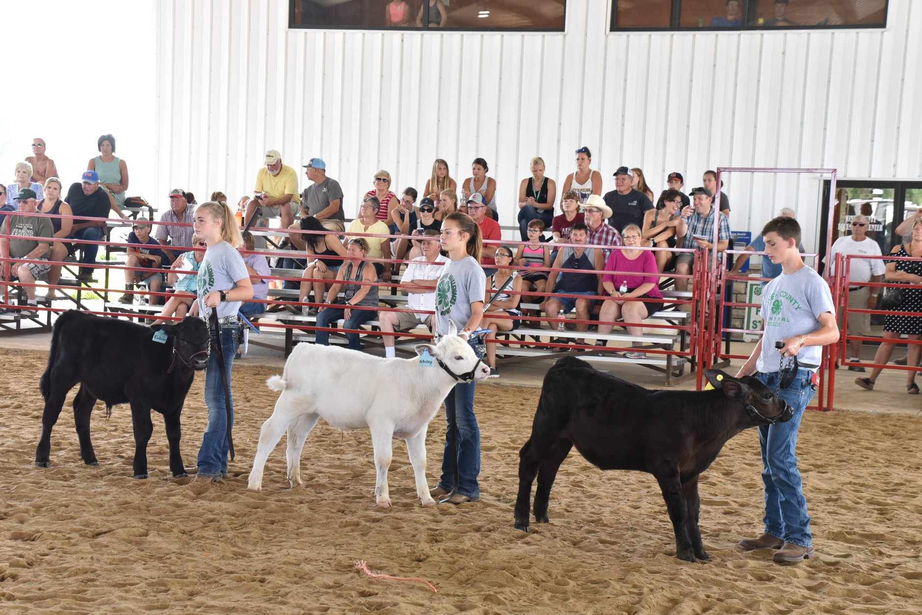 The 2020 Great Jones County Fair presented by Wellmark